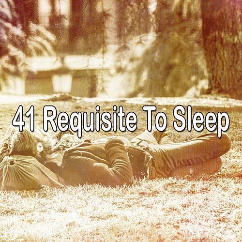 41 Requisite to Sleep de White Noise Babies