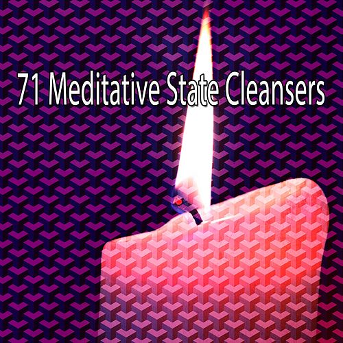 71 Meditative State Cleansers de Massage Tribe