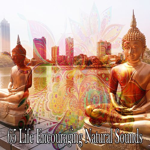 65 Life Encouraging Natural Sounds von Entspannungsmusik