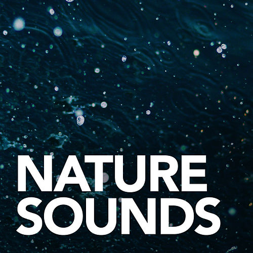 Nature Sounds de Sounds Of Nature