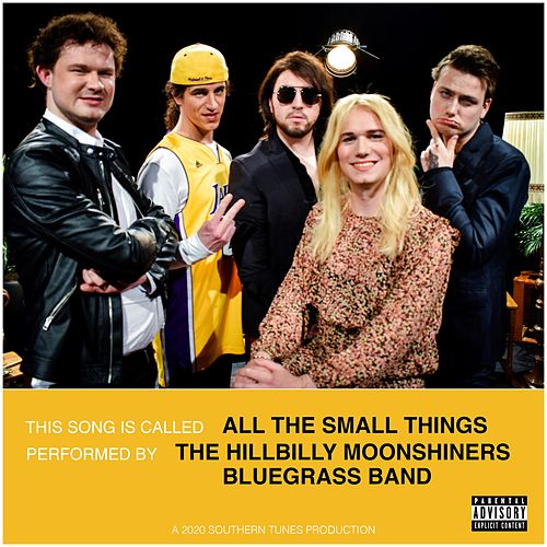 All the Small Things by The Hillbilly Moonshiners Bluegrass Band