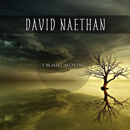 I'm Not Moving by David Naethan