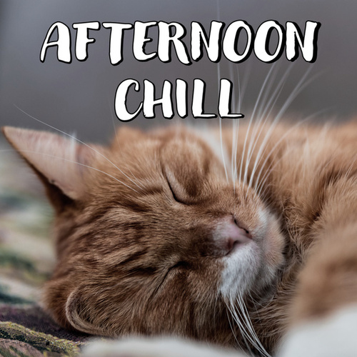 Afternoon Chill by Various Artists