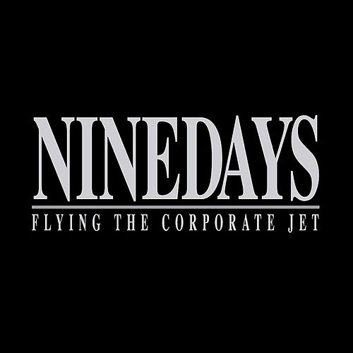 Flying the Corporate Jet (First Class Upgrade Edition) by Nine Days