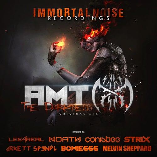 The Darkness von A.M.T