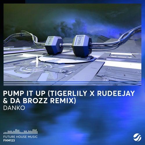 Pump It Up (Tigerlily x Rudeejay & Da Brozz Remix) de Danko