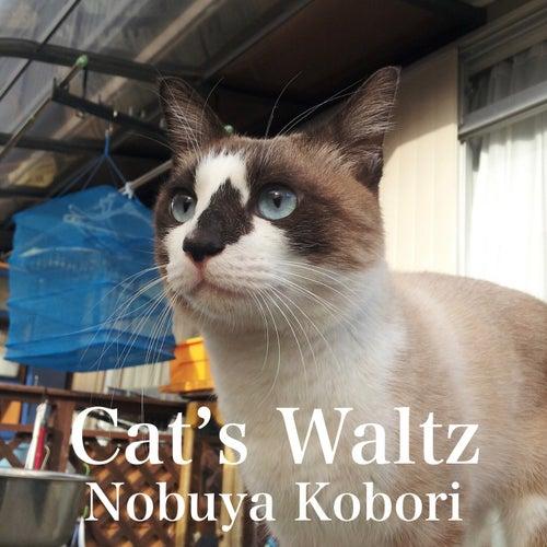 Cat's Waltz by Nobuya  Kobori