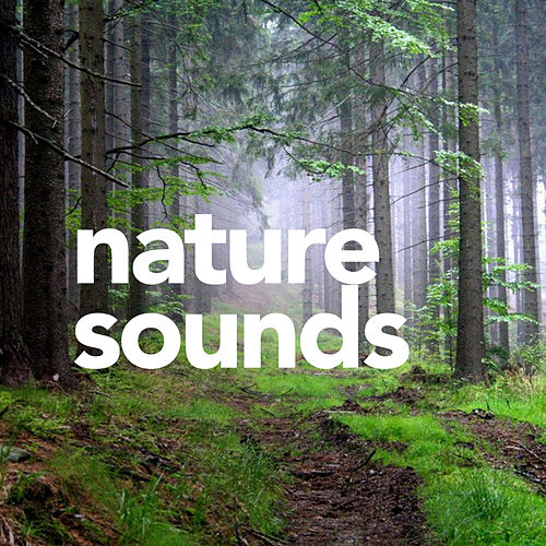 Sounds Nature by Sounds Of Nature