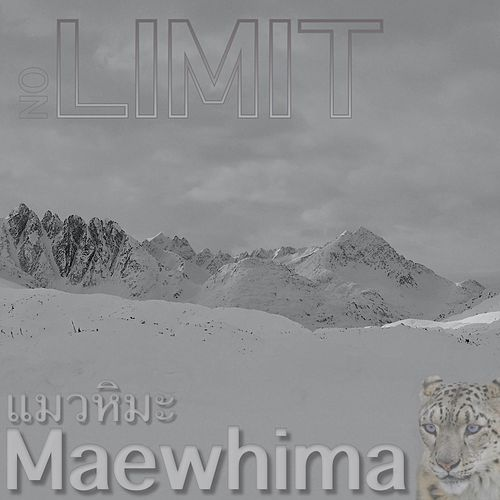 No Limit by Maewhima