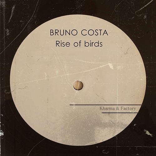 Rise of Birds by Bruno Costa