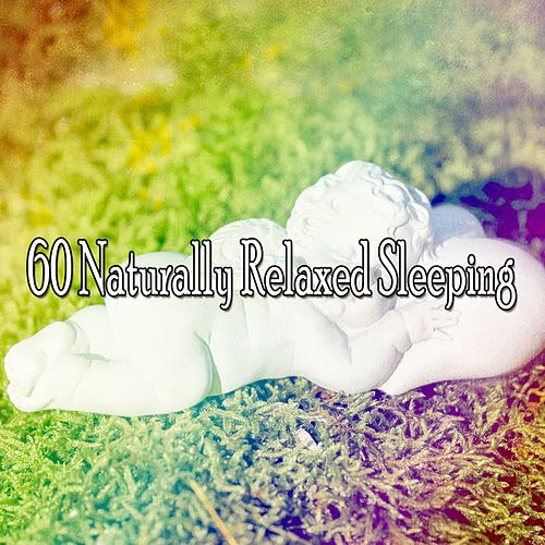 60 Naturally Relaxed Sleeping de Ocean Sounds Collection (1)