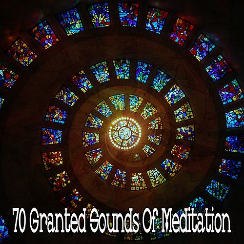 70 Granted Sounds of Meditation de White Noise Research (1)