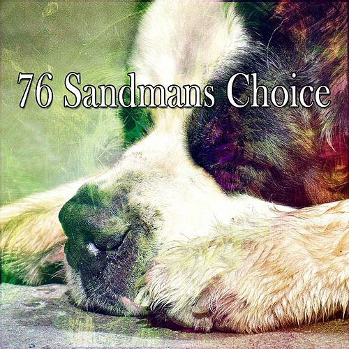 76 Sandmans Choice de White Noise Babies