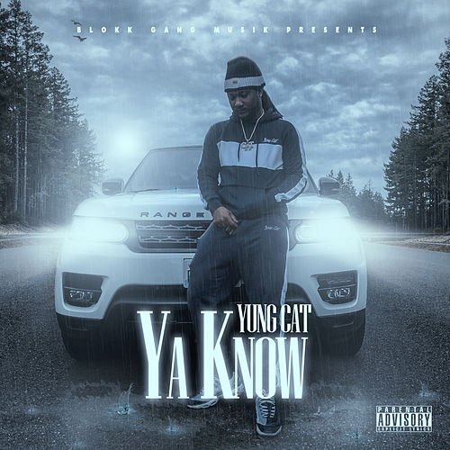 Ya Know by Yung Cat