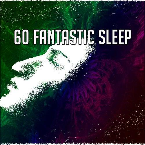 60 Fantastic Sleep de Sounds Of Nature