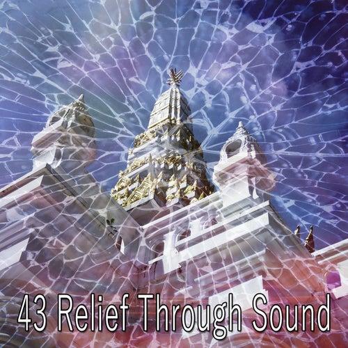 43 Relief Through Sound by Deep Sleep Meditation