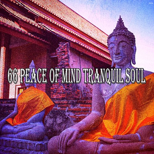 66 Peace of Mind Tranquil Soul de Massage Therapy Music