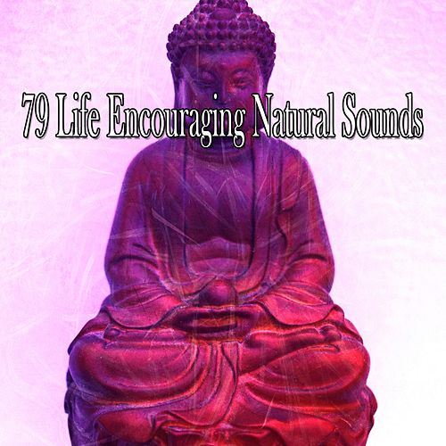 79 Life Encouraging Natural Sounds de Meditación Música Ambiente