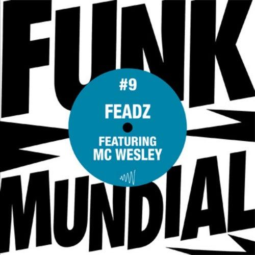 Subiu, Desceu / Funk Mundial #9 de Feadz