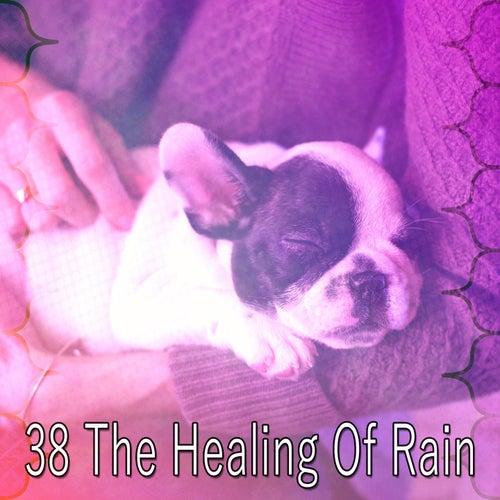 38 The Healing of Rain by Rain Sounds (2)