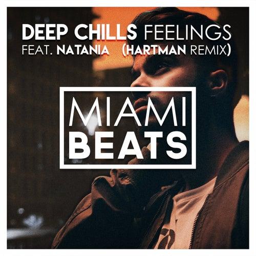 Feelings (Hartman Remix) de Deep Chills