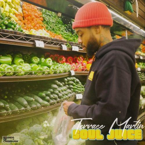 Soul Juice by Terrace Martin