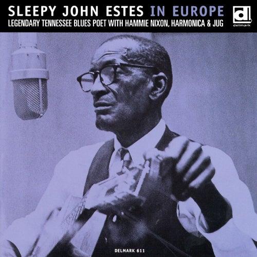 Sleepy John Estes in Europe de Sleepy John Estes