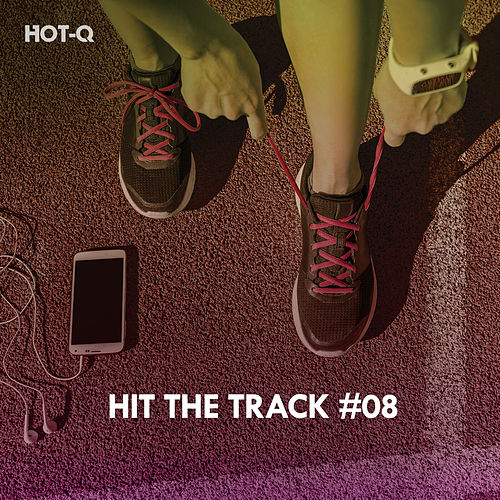 Hit The Track, Vol. 08 de Hot Q