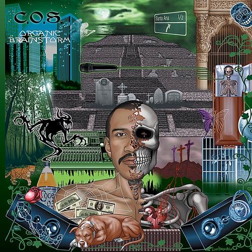 Organic Brainstorm di C.O.S.