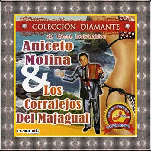 20 Temas Inolvidables de Aniceto Molina