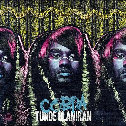 Cobra by Tunde Olaniran