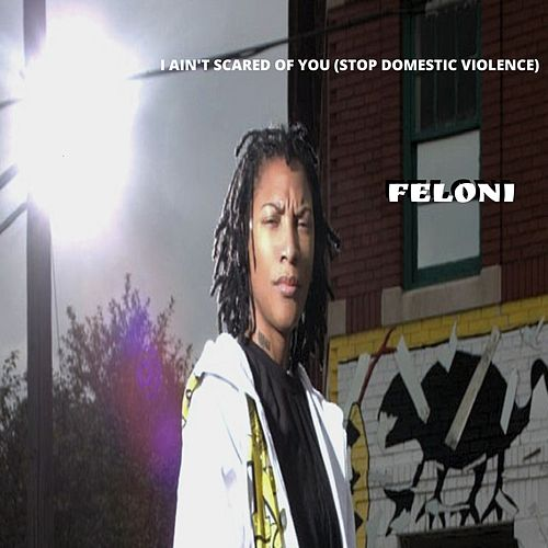 I Ain't Scared of You (Stop Domestic Violence) by Feloni