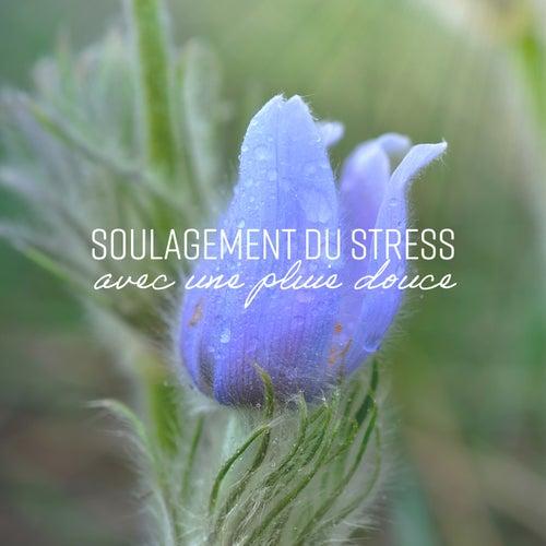 Soulagement du stress avec une pluie douce - Sons apaisants pour le sommeil, Méditation, Relaxation, Thérapie de guérison di Multi Interprètes