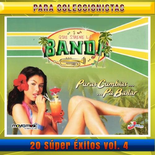 Que Suene La Banda Puras Cumbia Pa' Bailar,  Volumen 4 de Vários Artistas