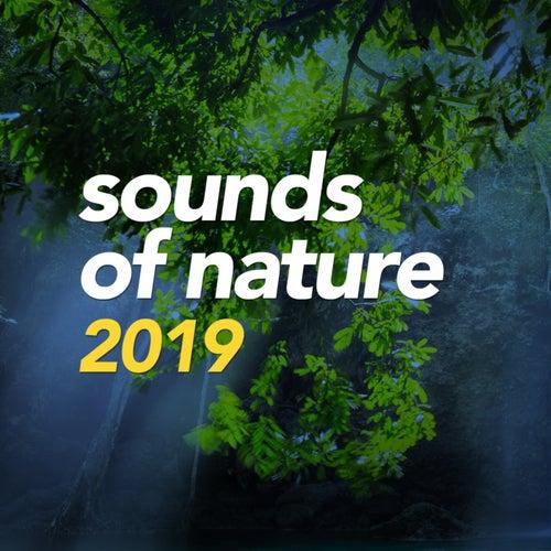 Sounds Of Nature 2019 de Various Artists