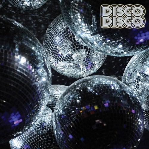 Disco Disco von Various Artists