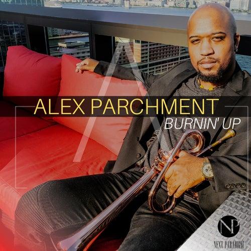 Burnin' up by Alex Parchment