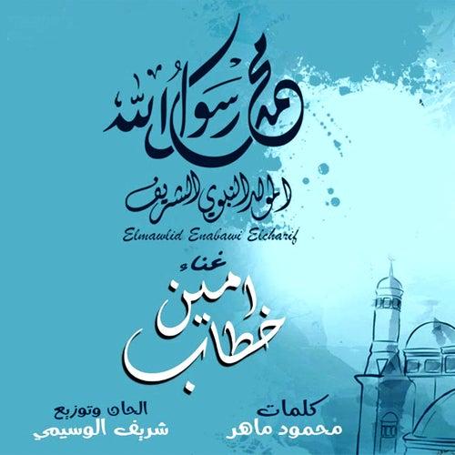 Habibi Ya Rasol Allah de Amin Khattab