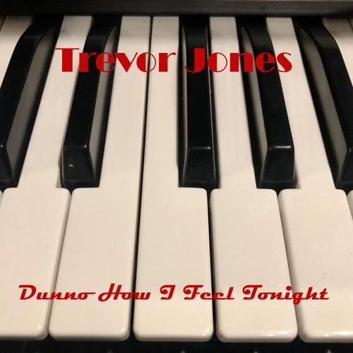 Dunno How I Feel Tonight by Trevor Jones
