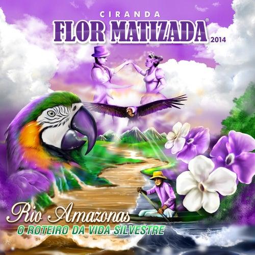 Rio Amazonas: O Roteiro da Vida Silvestre de Ciranda Flor Matizada