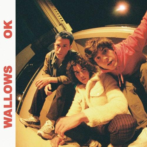 OK by Wallows