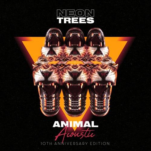 Animal (10th Anniversary Edition) (Acoustic) von Neon Trees