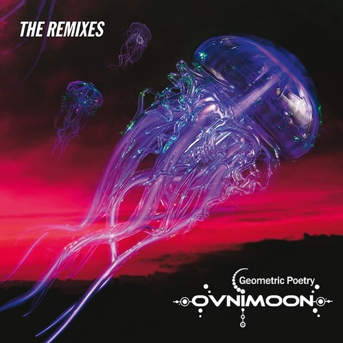 Geometric Poetry (The Remixes) by Ovnimoon