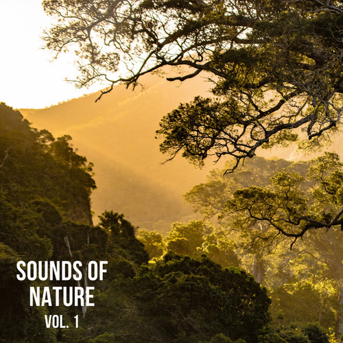 Sounds of Nature Vol. 1, Sounds of Nature Noise fra Nature Sounds (1)