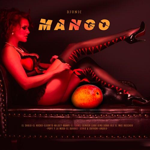 Mango (Remix) de DJ Unic