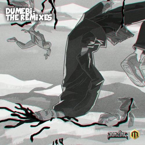 Dumebi (The Remixes) von Rema