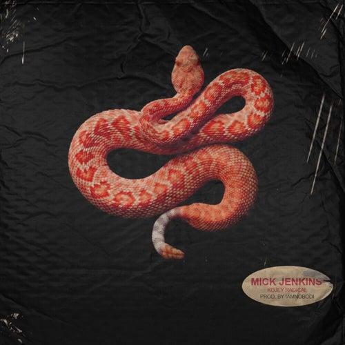 Snakes by Mick Jenkins
