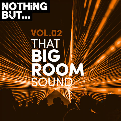 Nothing But... That Big Room Sound, Vol. 02 by Various Artists