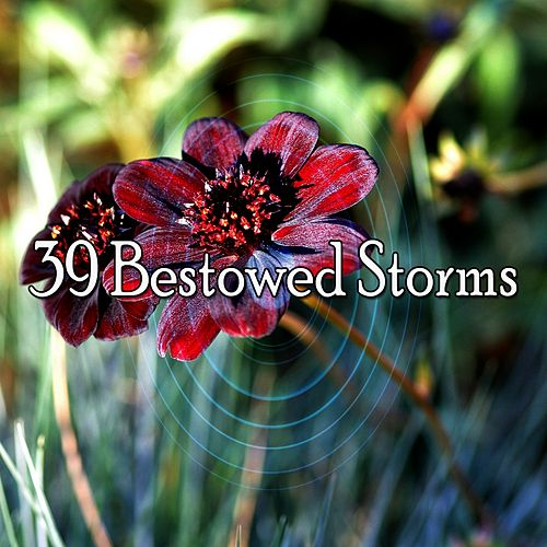 39 Bestowed Storms by Relaxing Rain Sounds