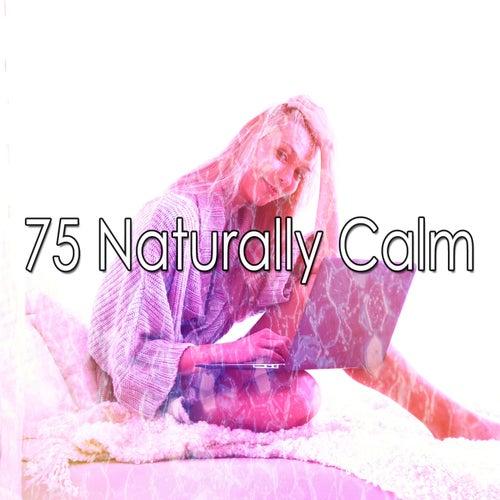 75 Naturally Calm by Baby Sleep Sleep